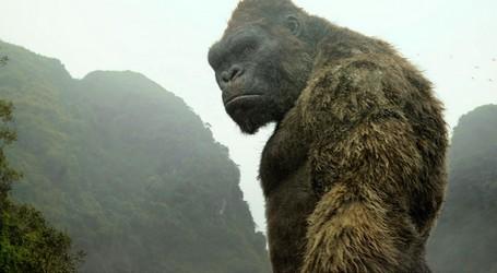 Kong_-_Skull_Island